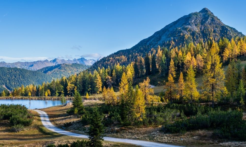 3 Best Places To See Fall Foliage When Out on the Road